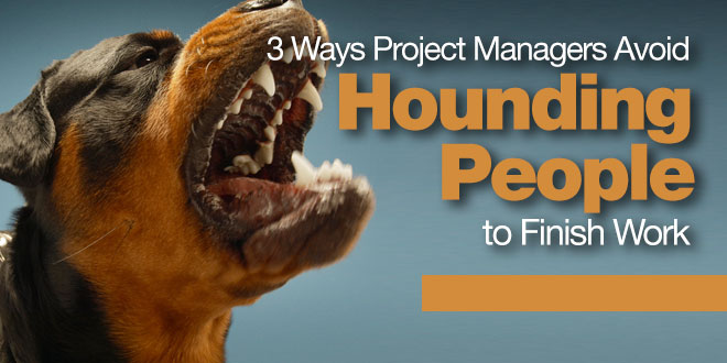 Photo of 3 Ways Project Managers Avoid Hounding People to Finish Work