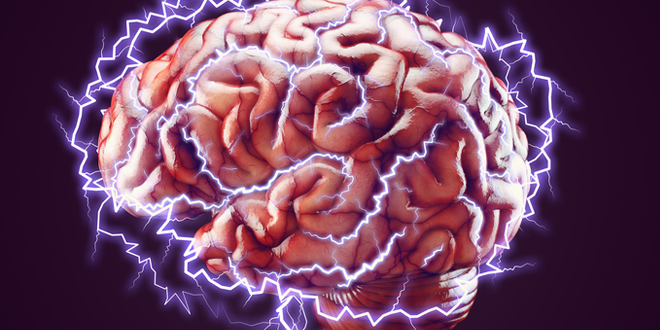 Photo of Project Managers: Are You Making the Most of Your Brain?