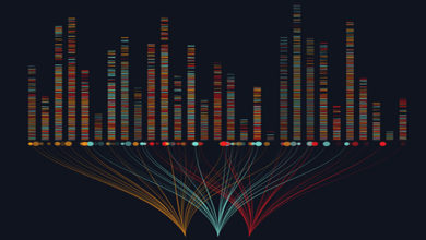 Photo of Big Data: An Effective Tool for Digital Marketers