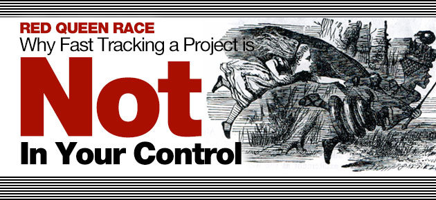 Photo of Red Queen Race: Why Fast Tracking a Project is Not in Your Control